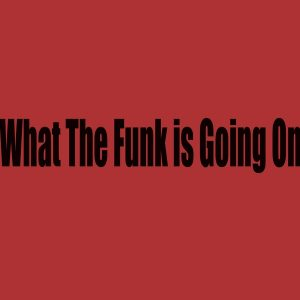 The Max - What The Funk Is Going On