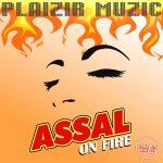 Les nouveaux remix d'Assal Mashup de l'automne 2021
